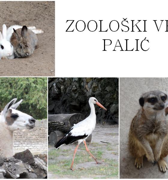 Zoo vrt Palić